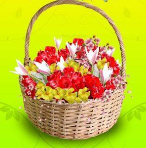 फूलों के रँगोँ से सजा पहाड़,फूलदेई त्योहार शुरू